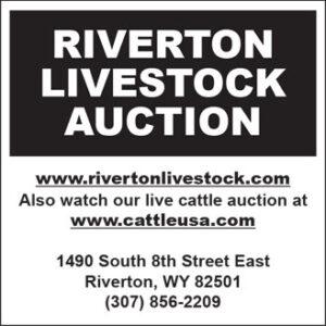 Riverton Livestock Auction